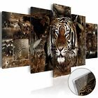 Framed Print Canvas Wall Art Modern Home Decor Picture Decoration Animal Tiger