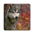 Wolf - Oversized Rubber Coasters Set of 4 or 6