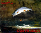 POSTER JUST ENJOY THE FISHING COSTA RICA BIG FISH TRAVEL VINTAGE REPRO FREE S/H