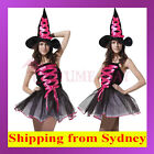Holloween Sexy Ladies Pink Wicked Witch Fancy Dress Costume with Hat