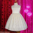 Scalloped Embroidered Occasion Dress Wedding Flower Girl Bridesmaid 3y-6y #249