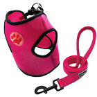 Paw Print Air Mesh Dog Harness and Leash Set for Poodle Yorkie Terrier Shih Tzu