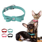 Cute Bowknot Suede Leather X Small Dog Collar Pink Blue Red Black for Dog Cats