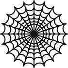 Decorative Spider's web design Funny Vinyl Decal Stickers JDM VW VAG lrg SM4-143