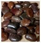 Large Red Tint Polished River Pebbles 25-55mm Home Garden Aquariums  Postage Inc
