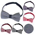 New DQT Knit Knitted Pin Stripe Adjustable Pre-Tied Men's Bow Tie