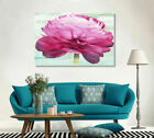 Pink Flower Stretched Canvas Print Framed Wall Art Hanging Home Office Decor DIY