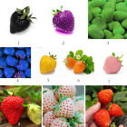 100 PCs Strawberry Seeds Nutritious Delicious Healthy Fruit Vegetables Seed