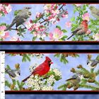 "QT ""SONGS OF NATURE"" ""26365-B RED & MIXED BIRDS STRIPED FABRIC- SELECT SIZE"