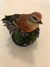 Eaglemoss Andy Pearce Country Bird Collection Ornaments!