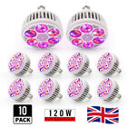 LED Grow Light Lamp Bulb 120W E27 For Indoor Plant Hydroponics Veg Full Spectrum