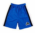 NBA Basketball Boys Girls Youth Minnesota Timberwolves Mesh Shorts , Blue