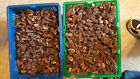 Morel Mushrooms f/ Montana Mountain 2018 No Stem(Dried) - 2oz - 1lb, Best Prices