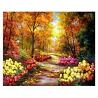 Full Drill 5D Diamond Painting Embroidery Cross Crafts Stitch Home Art Decor DIY