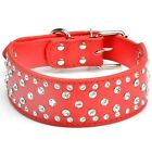 Dog Collars Nylon Cute Bears Pattern Wide LED Lights Night Safety Pet Cat Collar