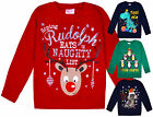 Kids Christmas Jumper Girls Boys Xmas Cotton Sweatshirt Pull Over Top 2 - 6 Yrs