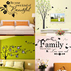 Family Photo Tree Wall Decal Sticker Large Vinyl Photo Pictu