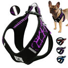 No Pull Dog Vest Harness Pet Sport Haulage Rope Reflective Dogs Harness