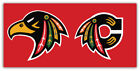 "Chicago Blackhawks NHL Car Bumper Sticker Decal ID:4 ""SIZES"" $3.75 USD on eBay"