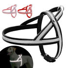 No Pull Leather Dog Harness Reflective Adjustable Bulldog Rottweiler Pink Red