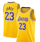 Los Angeles Lakers Icon Swingman Jersey LeBron James NBA Men 2019