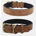 Soft Leather Personalized Dog Collar Small Medium Large Dogs