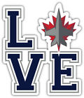 "Winnipeg Jets Love NHL Sport Car Bumper Sticker Decal ""SIZES'' $4.5 USD on eBay"