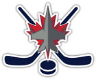 "Winnipeg Jets Sticks NHL Sport Car Bumper Sticker Decal ""SIZES'' $4.5 USD on eBay"