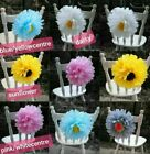 Tissue Paper Pom poms wall flower's wedding party birthday hanging decorations