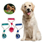 Pet Molar Bite Toy Tooth Cleaning Dog Floor Suction Cup Rope Ball Chew Toys UK