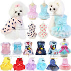 Small Pet Dog Cat Summer Lace Skirt Princess Tutu Dress Puppy Clothes Apparel.