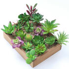 Mini Artificial Succulents Plants Fake Succulent Bonsai  Home Office Decor
