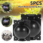 5X+Plant+Root+Growing+Device+Pressure+Propagation+Ball+Box+Grow+Controller+UK