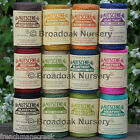NUTSCENE SPOOL OF TWINE 110m Coloured Jute String 15 Colours, Craft Gift Garden