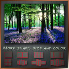 ' Landscape Blue Bell Forest '  Wall Art Deco Box Canvas More Style Size & Color
