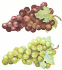 Ceramic Decals Green Red Grape Bunch Fruit Leaf image