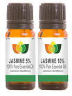 Jasmine Absolute 5% Pure Oil Dilution in Grapeseed - Aromatherapy Essential