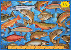 2011 RJR SPORTS FISH FISHING BLUE OR GREEN FABRIC (MAKE A SELECTION)