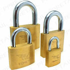 SOLID BRASS ★KEYED ALIKE★ Padlock 25/40/50/60mm Small-Large Strong Security Lock