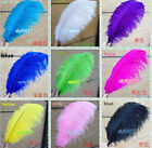 Wholesale! 10/50/100/200PCS PURE OSTRICH FEATHERS 8-16 inch/20-40cm FOR WEDDING