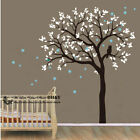 Owl Hoot Star Tree Wall Stickers Vinyl Decal Kids Nursery Baby Room Decor Art AU