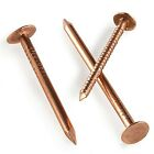 25 COPPER CLOUT ROOFING NAILS - 5 SIZES - ALSO USED FOR TREE STUMP REMOVAL - DIY