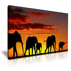 NEW ANIMAL Elephant 7 Canvas Framed Printed Wall Art ~ More Size