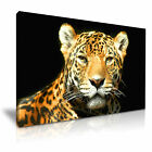 NEW ANIMAL Leopard 9 Canvas Framed  Printed  Wall Art ~ More size