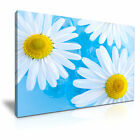 FLOWER Daisy 4 1-L Canvas Framed Printed Wall Art ~ More Size