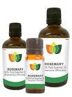 100% Natural Rosemary Essential Oil - Multi Size, FREE P&P (Aromatherapy)
