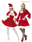 Adult Ladies Size  8 - 22  Sexy Santa Costume Womens Christmas Fancy Dress Outfi