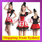 Red Queen of Hearts Alice in Wonderland Poker Maid Halloween Fancy Dress Costume