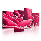 FLOWER Rose 15 Canvas 4A-RH Framed Printed Wall Art ~ 4 Panels