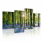 NATURE Landscape Forest 8 Canvas 4A-RH Framed Printed Wall Art ~ 4 Panels